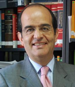 José Luis Piñar web 2011